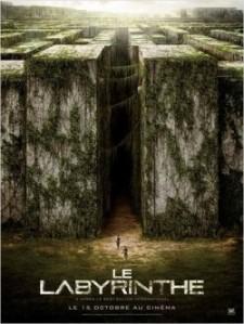 le-labyrinthe-65267-250-400